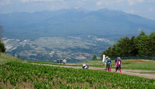 雄大な眺望の入笠山