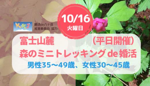 富士山麓・森のミニトレッキングde婚活(10/16) 平日開催