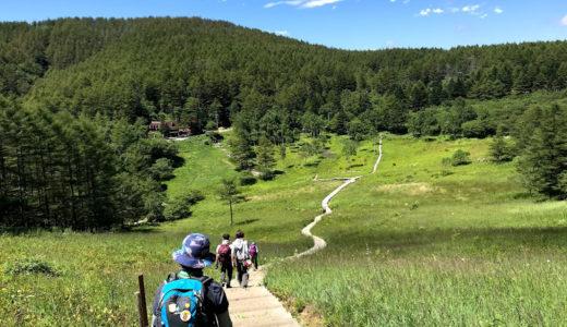 入笠山トレッキングde婚活(8/24) 実施報告 花の名山にふさわしい百花の鮮やかなお花畑と、高原の爽やかな空気を楽しんできました。